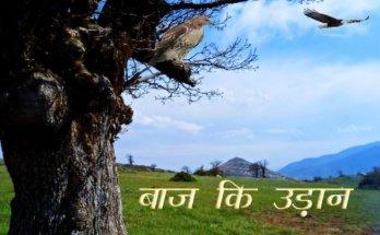 Baaj Ki Udan Moral Stories in Hindi