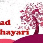Hindi Sad Poetry